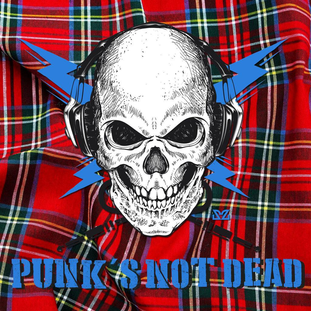 Perché si chiama punk